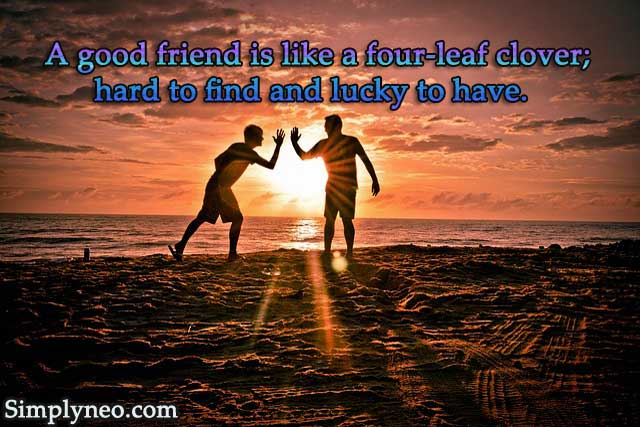 """A good friend is like a four-leaf clover; hard to find and lucky to have."" — Irish Proverb"