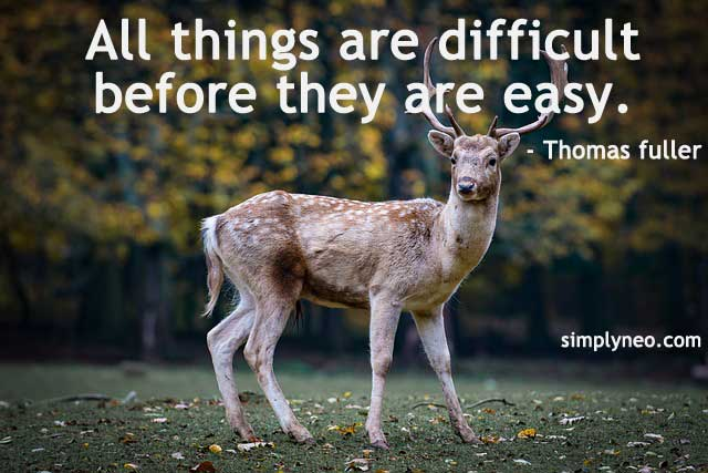 All things are difficult before they are easy. - Thomas fuller