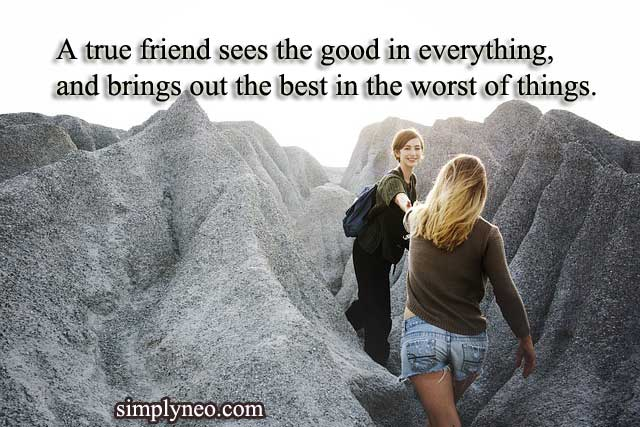 A true friend sees the good in everything, and brings out the best in the worst of things. – Sasha Azevedo