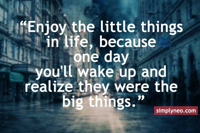 Enjoy the little things in life, because one day you'll wake up and realize they were the big things.
