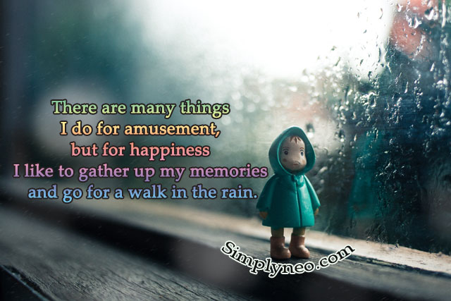 There are many things I do for amusement, but for happiness I like to gather up my memories and go for a walk in the rain.