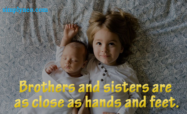 Brothers and sisters are as close as hands and feet. – Vietnamese Proverb