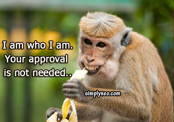 I am who I am. Your approval is not needed..